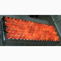 Яйцо инкубационное качественное пропечатанное - птица
