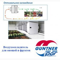 Охладитель для овощей и фруктов GUNTNER