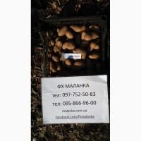 Продаем семенной картофель Гранада I и II репродукции. Отправка по всей Украине