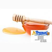 Куплю мед оптом дорого від 300 кг Уманський р-н Черкаська обл