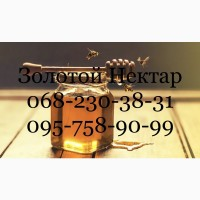 Купуємо Ріпаковий та Соняшниковий мед, Херсонська, Дніпропетровська, Миколаєвська обл